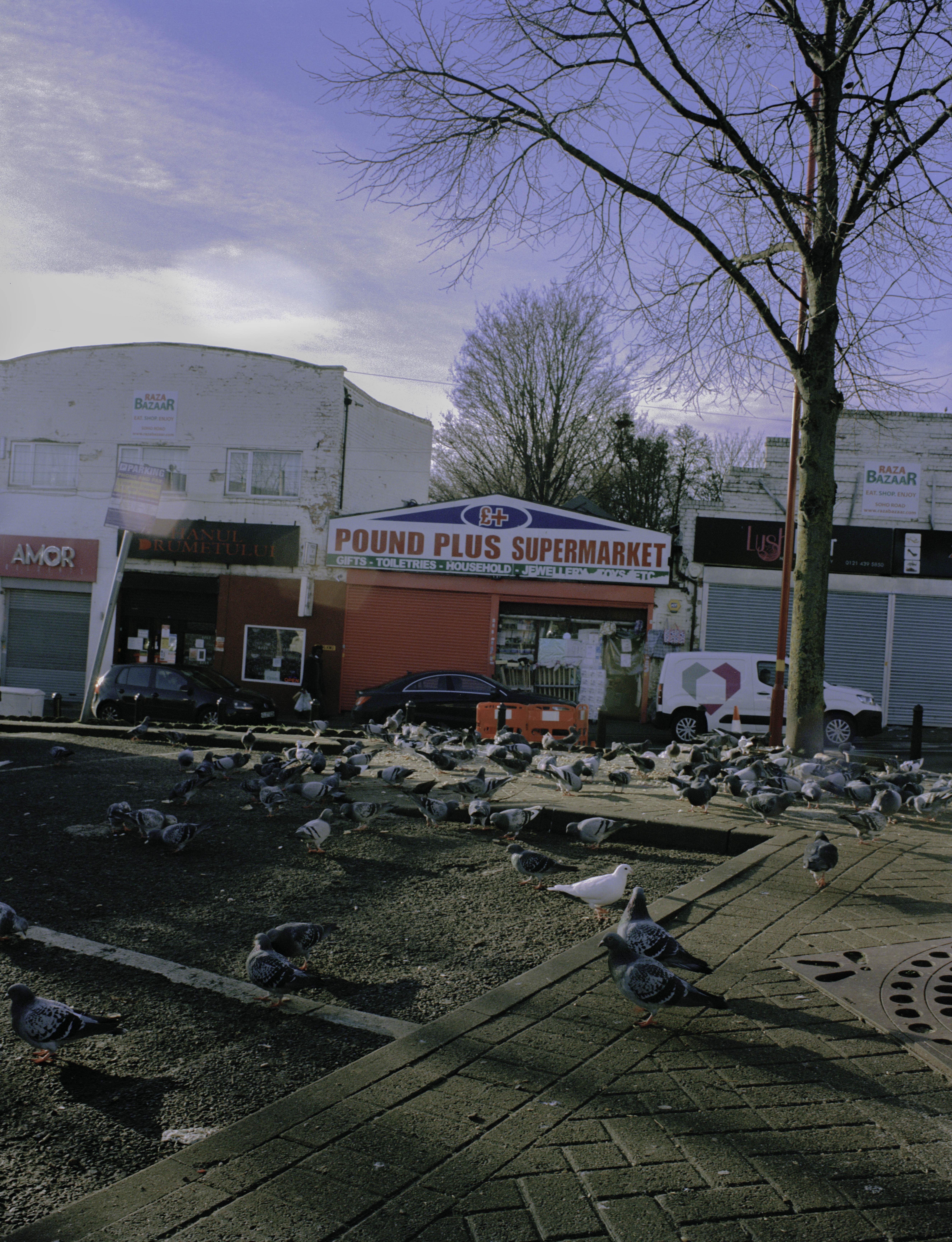 poundplussupermarket